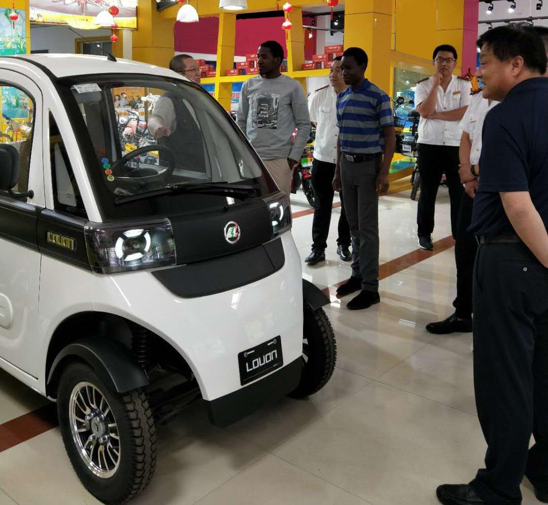 酷丨陆昂EV闪耀上市,爆款微车引发抢购热潮